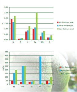 This information is essential for the interpretation of the analytical results and for the formulation of recommendations. The accuracy of the recommendations will depend on both the extent to which the sample is representative of the orchard and on the accuracy of the information that is supplied. No recommendations can be given if this information is inadequate.