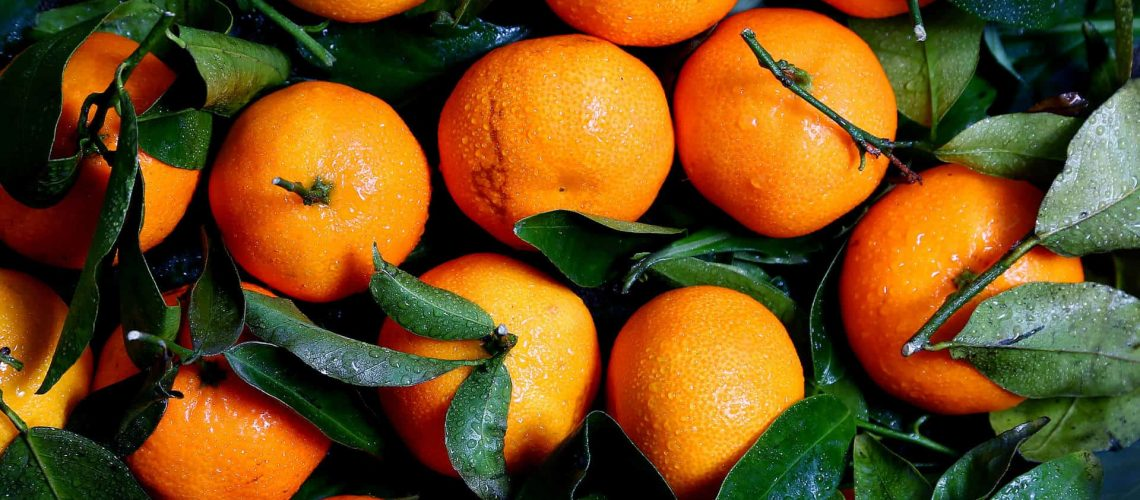 Citrus (14)